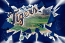 Detroit Tigers Fan screenshot 5/5