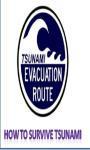 How To Survive Tsunami screenshot 1/1