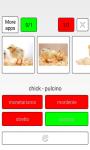 Learn Portuguese word screenshot 2/3