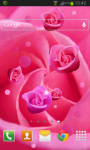 Pink Rose Live Wallpaer screenshot 2/2