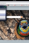 PERFECT Web Browser - EXTRAORDINARY Browser w/ REAL-Tabs, TOUCH Scroll & VGA screenshot 1/1