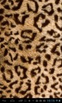 Animal fur textures LWP screenshot 1/5