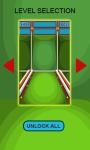 Skee Ball NAIP screenshot 2/2