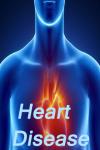 The Heart Disease screenshot 1/3