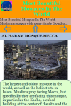 Most Beautiful Mosques In The World screenshot 3/3