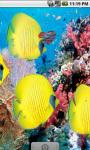 Yellow Fish Underwater Live Wallpaper screenshot 1/4