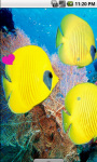 Yellow Fish Underwater Live Wallpaper screenshot 2/4
