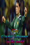 Top Cricket Spinner in the world screenshot 1/4