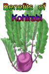 Benefits of Kohlrabi screenshot 1/4