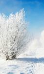 Frozen Bushes Live Wallpaper screenshot 1/3