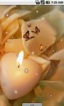 Candle Heart Live Wallpaper screenshot 3/4