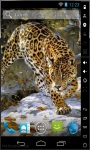 Leopard Hunting Live Wallpaper screenshot 2/2