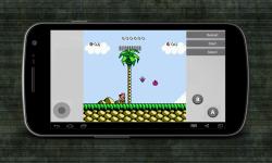 Hudsons Adventure Island III screenshot 3/4