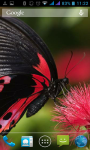 Natural Butterfly Wallpaper  screenshot 2/3
