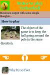 Rules to play Tetherball screenshot 4/4