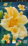 Yellow Flower LWP screenshot 2/2