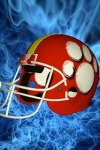 Football Helmet 3D - Design your helmet decals screenshot 1/1