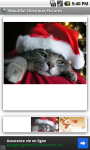 Beautiful Christmas Pictures screenshot 3/3