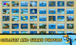 Divemaster - Scuba Diver Photo Adventures screenshot 5/6