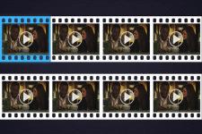 Frame Shot Video Image Capture screenshot 2/4