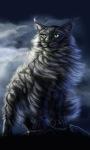 Cat Winds Live Wallpaper screenshot 1/3