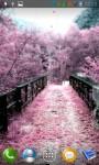 Sakura live wallpper screenshot 4/4