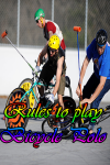 Rules to play Bicycle Polo  screenshot 1/4