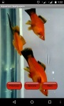 Aquarium Wallpapper Fre screenshot 2/4