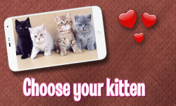 Pat Cute Kitten screenshot 2/3