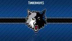 Minnesota Timberwolves Fan screenshot 1/2