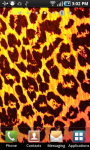 Leopard Print LWP screenshot 2/2