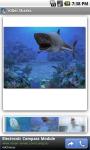 Killer Sharks screenshot 2/3