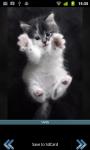 Cutie Cats screenshot 1/3