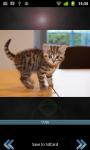 Cutie Cats screenshot 3/3