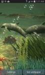 Dolphins Under The Sea Live Wallpaper screenshot 1/3