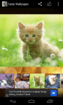 Catty Wallpaper screenshot 1/6