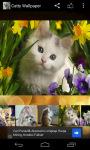 Catty Wallpaper screenshot 5/6