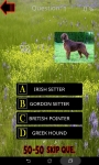 Which is The Dog Breed screenshot 2/6