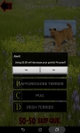 Which is The Dog Breed screenshot 4/6