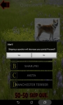 Which is The Dog Breed screenshot 6/6