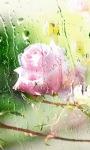 Rose Glass Live Wallpaper screenshot 1/3