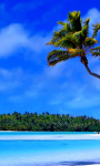 Amazing Tropical Islands ever Wallpaper screenshot 4/6