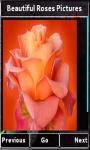 Beautiful Roses Photos screenshot 3/4