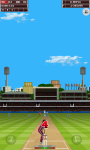 India Vs West Indies 2013 Free screenshot 2/6