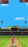India Vs West Indies 2013 Free screenshot 3/6