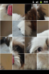 Funny Puppy Puzzle screenshot 2/6