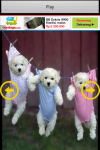Funny Puppy Puzzle screenshot 3/6