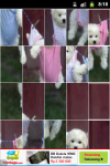 Funny Puppy Puzzle screenshot 4/6