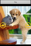 Funny Puppy Puzzle screenshot 5/6