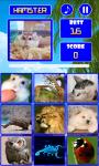 Gotcha - Lovely Animals screenshot 1/6